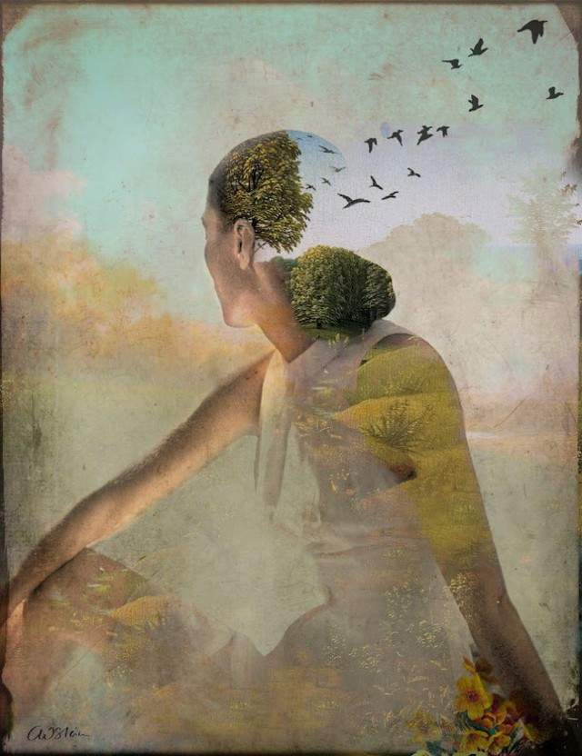 Catrin Welz-Steindigital-collages-c