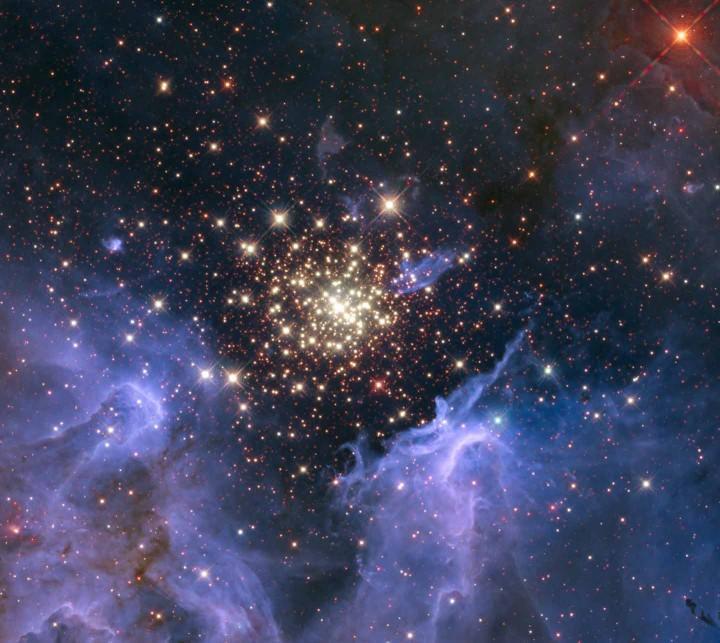 stelle.1