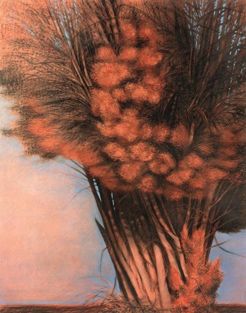 dugo_alberi_003