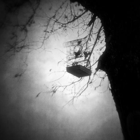vangelis bagiatis-set_my_mind_free