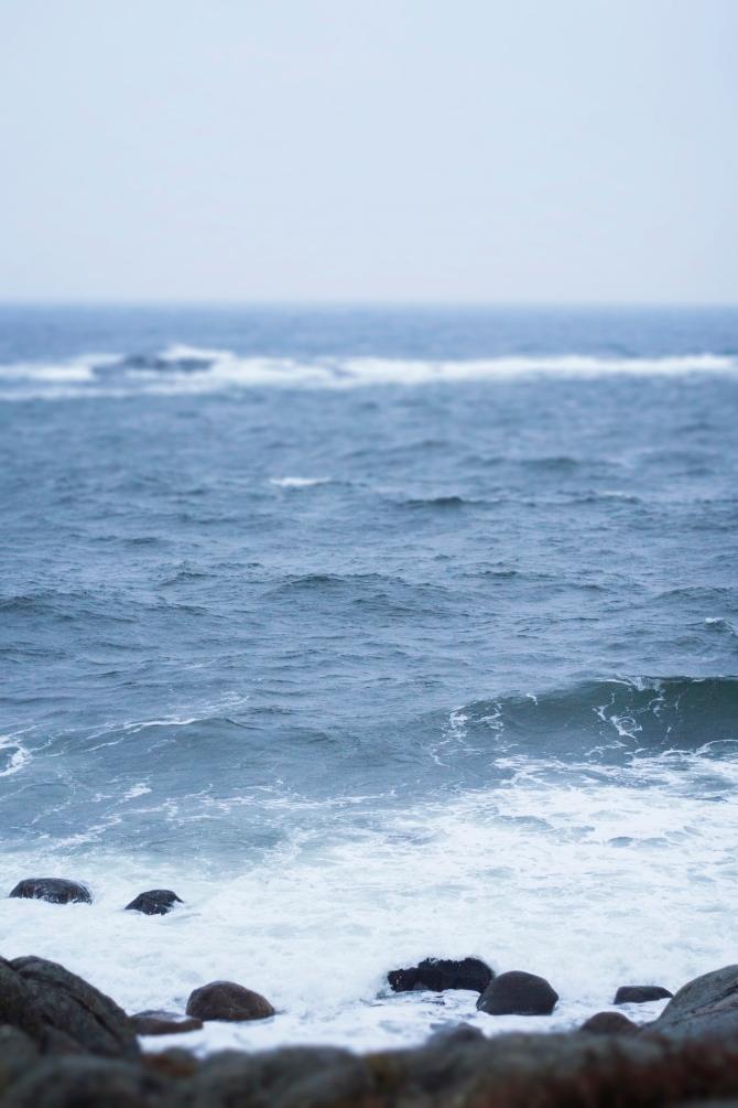 aleksandra johansen.mare inverno