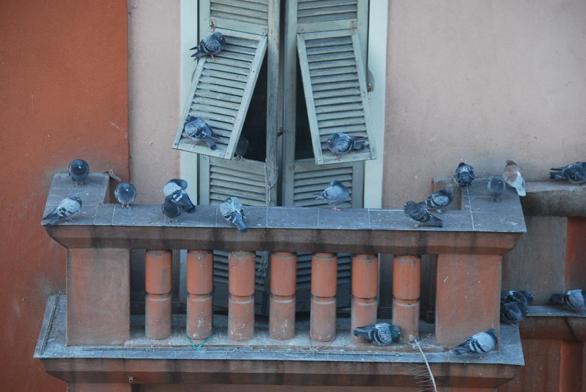balcone ornella