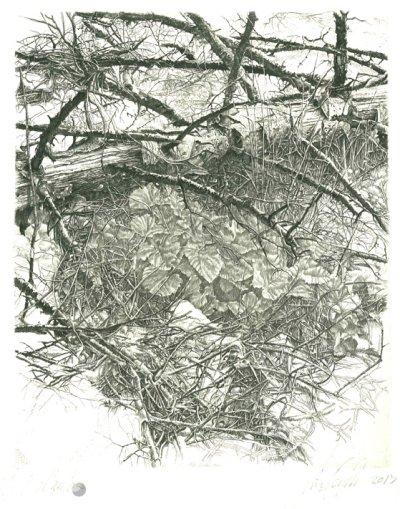 Al tronco smunto dell'abete