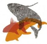 bbwf-logo-2-e1438658514528