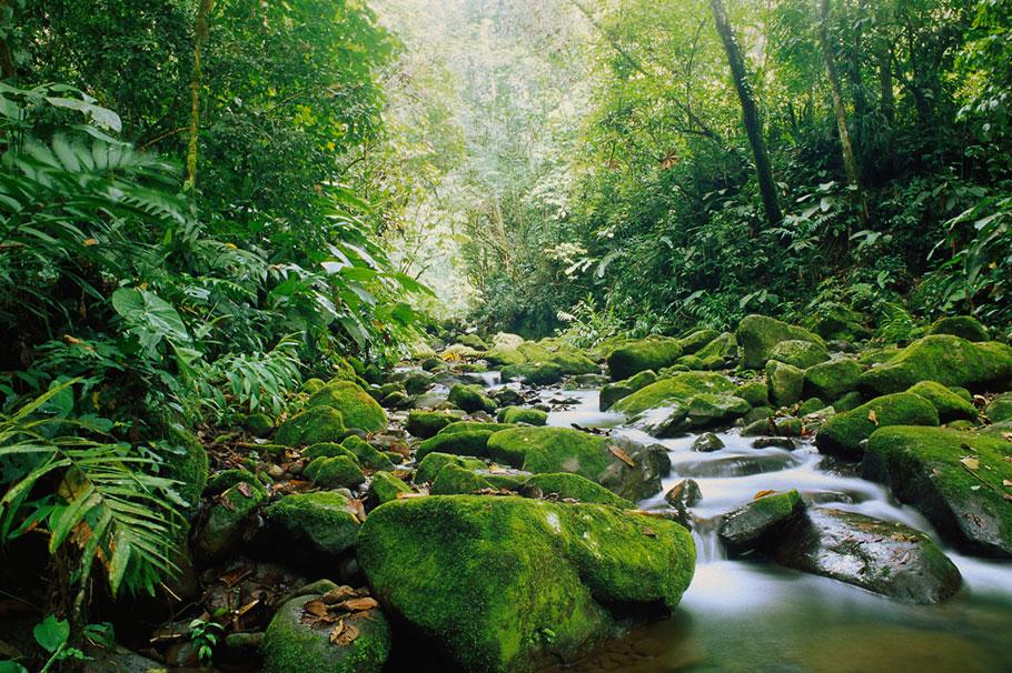 Costa-Rica20
