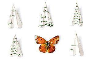 adolfo serra -farfalle