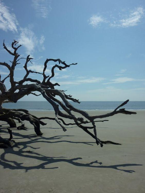 Jekyll Island12