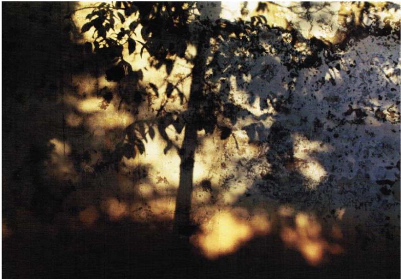 abbas kiarostami- the-wall-42