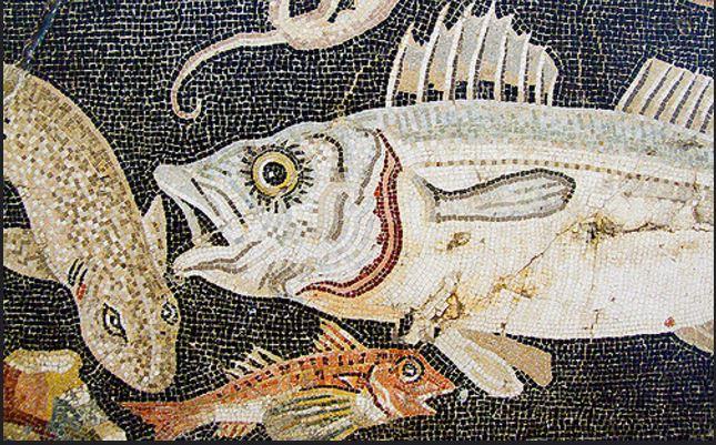 Nella vasca dei pesci rossi anna maria farabbi non for Filtro vasca pesci rossi